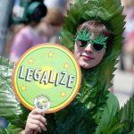 Парламент Нидерландов легализовал выращивание марихуаны