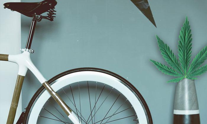 Велосипедный спорт и каннабис