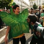 Сторонники легализации принесли марихуану в кабинет Джеффа Сешнза