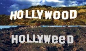 Hollywood-turns-Hollyweed-pictures-viral
