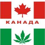 канада, марихуана, легализация, конопля, каннабис, легализация марихуаны в канаде, легализация марихуаны, курение конопли, косяк, сорт марихуаны,